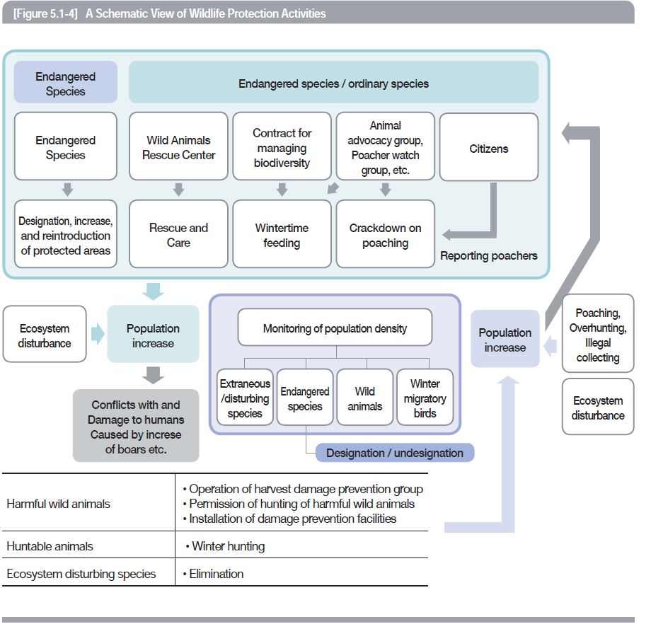 A Schematic View of Wildlife Protection Activities
